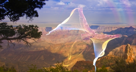 high spirits: Ghostlike bird in flight above grand canyon rim