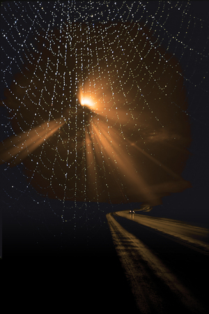 Lonely Road and spiders web Banque d'images