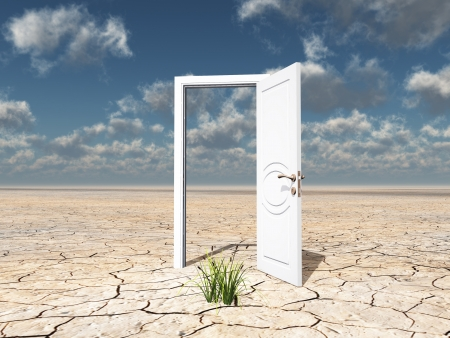 Single open door in cracked desert with clump of grass photo