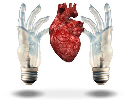 Two hand shaped light bulbs frame human heart Stock Photo - 24439858