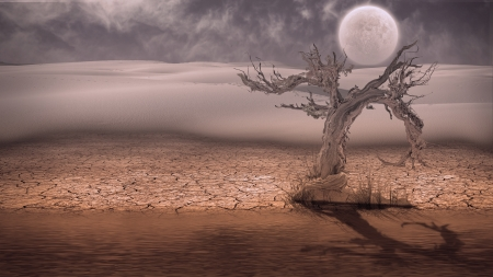 barren: Desert Flood