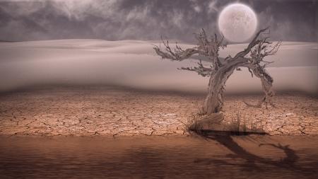 toter baum: Wüste Flood