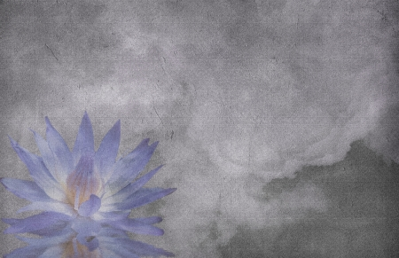 Lotus on grunge cloud background photo