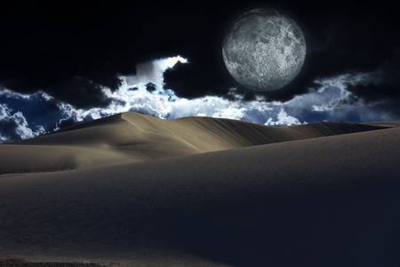 Desert Moon photo