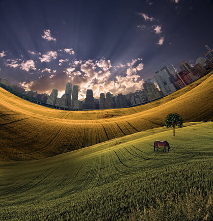 tranquil scene on urban scene: City in distance and meadow Stock Photo