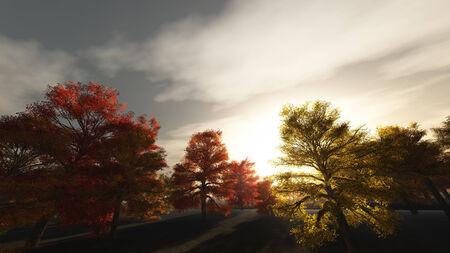Autumn Sunrise photo