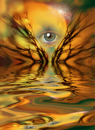 hypnosis: Eye and branches of tree Stock Photo