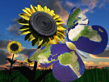 Earth Butterfly photo