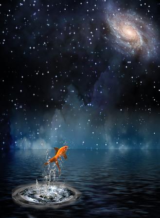 Goldfish leaps under night stars photo