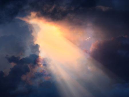 Vogel in de vlucht hoog boven in dramatische hemel Stockfoto