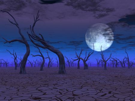 wasteland: Desert Scene