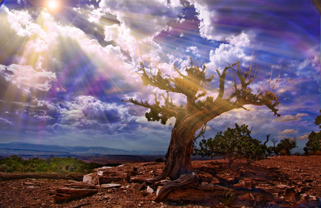 Light streams into rocky desert scene photo