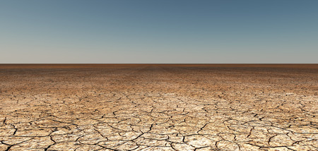 barrenness: Dry cracked earth