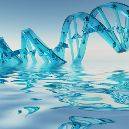 human evolution: DNA Strand Refelctions Stock Photo