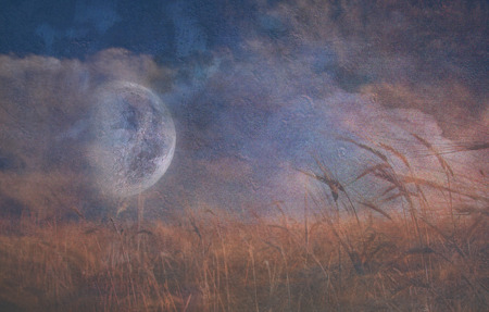 surrealistic: Moon Fall over Field of Grain Stock Photo