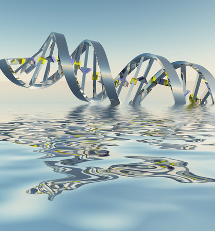genetic information: DNA Strand Refelctions Stock Photo