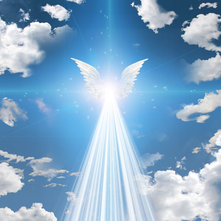 jesus in heaven: Angel winged