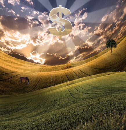 serene: Large silver dollar symbol over serene landscape Stock Photo