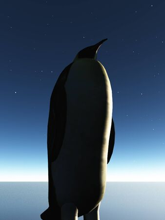 twilight: Penguin Twilight