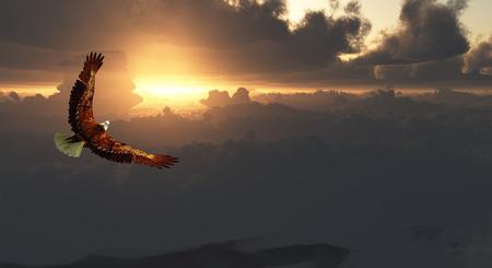 Eagle in Flight Above Dramatic Cloudscape Banque d'images