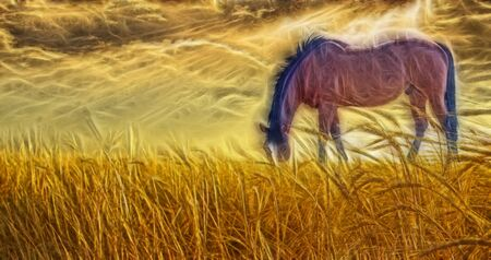 painting art: Horse grazing in sun drenched field Stock Photo