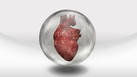physical exam: Human heart earth in glass sphere