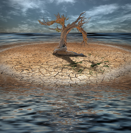 waterless: Desert Flood island with dead tree and clock made of grass