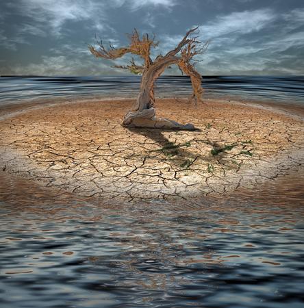 Wüste Flood Insel mit totem Baum und Uhr aus Gras Standard-Bild - 47790921