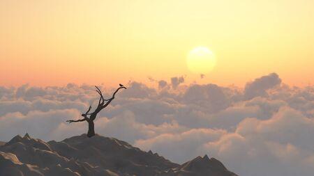 mountaintop: Mountaintop view