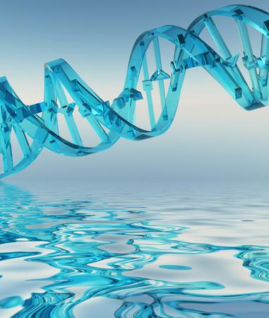 molecula de agua: Hilo de la DNA Refelctions Foto de archivo
