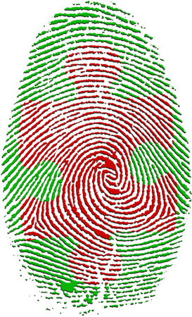 theft proof: Fingerprint with Puzzle