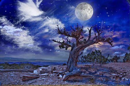 star sky: Desert Landscape Stock Photo