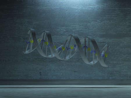 strand: DNA Strand