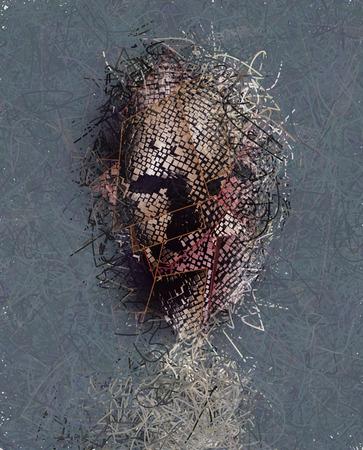 Donker gezicht in stukken