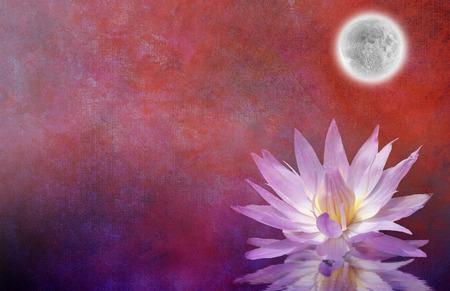 zen attitude: Contexte Lotus Blossom texturé Banque d'images