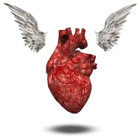 paramour: Heart with wings