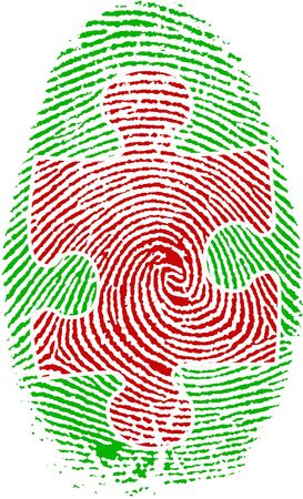 Fingerprint with Puzzle
