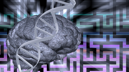 genetic research: Dna abd brain puzzle