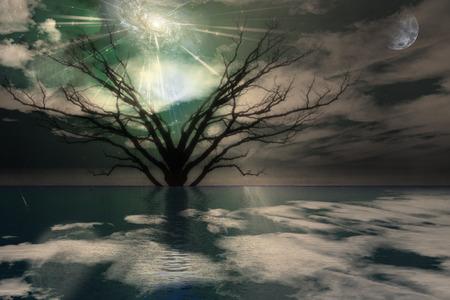 Magical Landscape Reklamní fotografie