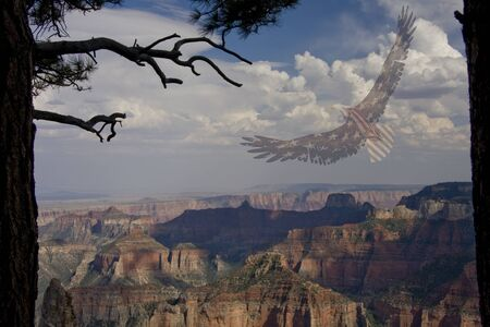 eagle canyon: Freedom Fly Ghosted American Flag Eagle in the sky Stock Photo
