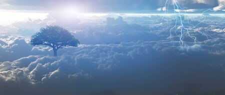miracle tree: Sunrise, lightning above the clouds. Stock Photo