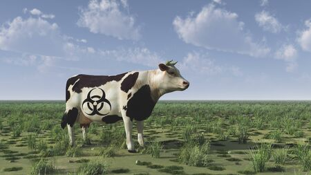 Cow with biohazard sign.