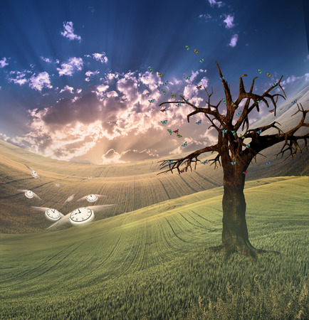 diminishing view: Time takes flight in peaceful landscape