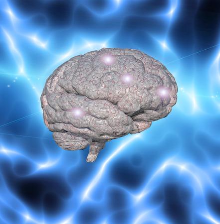 Brain working Stock Photo