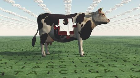 genetically modified crops: GMO Business Cow