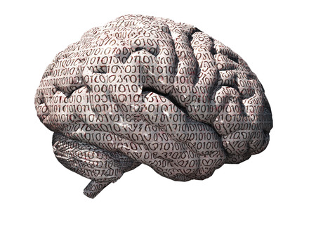 Binary brain