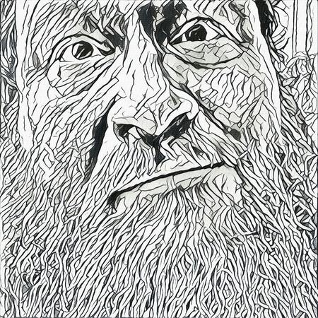 Illustration. Man face with beard. 写真素材
