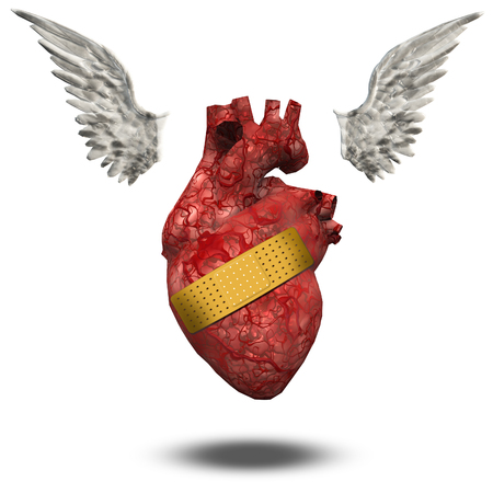 Wounded heart free to fly