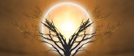 Mystic tree in moonlight.