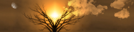 Mystic Tree of Life. Moon in Cloudy Sky. Sunset or Sunrise. 3D rendering Stock Photo